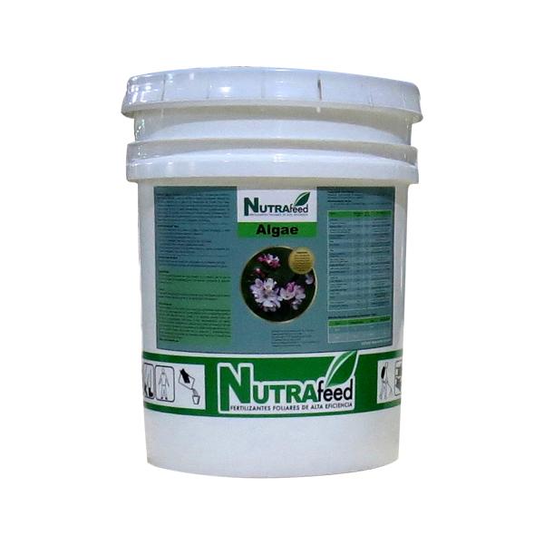 Fertilizante Agae Plus